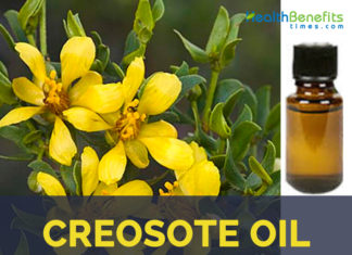 Creosote Oil facts and benefits