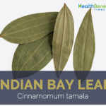 Indian Bay Leaf facts and health benefits