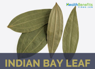 calabash bay leaves Bay leaves add their essence and aroma to our soups and stews but did you ever wonder how to grow a bay leaf tree get tips on how to grow a bay leaf tree in this article.