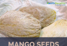 Mango seed facts and benefits