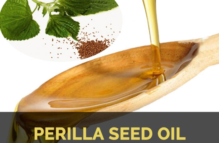 Perilla seed oil Facts and Health Benefits