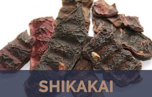 Uses and benefits of Shikakai