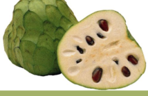 Cherimoya-health-benefits