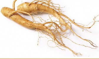 Ginseng-Facts-and-health-benefits