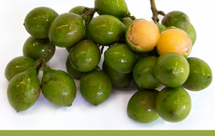 Health-benefits-of-Spanish-Lime
