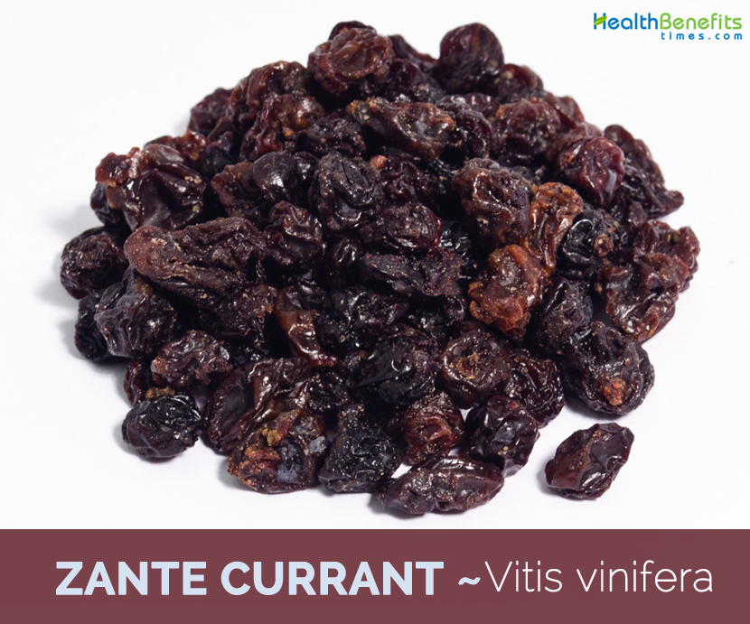 Health-benefits-of-Zante-currant