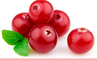 11 Health benefits of Bearberry (Uva ursi)