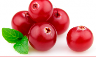 11 Health benefits of Bearberry (Uva ursi)