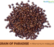 Health benefits of Grains of Paradise