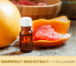 Health-benefits-of-Grapefruit-seed-extract