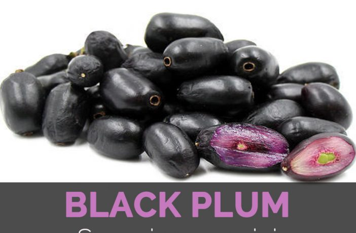 Black Plum Facts, Health Benefits and Nutritional Value