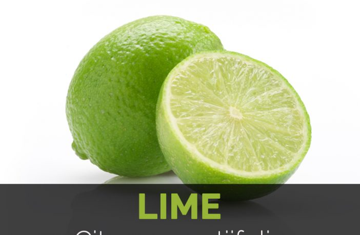 Lime Facts, Health Benefits and Nutritional Value