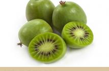 Kiwi berry-Actinidia arguta