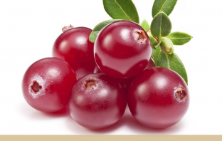 Facts and Health Benefits of Cranberry