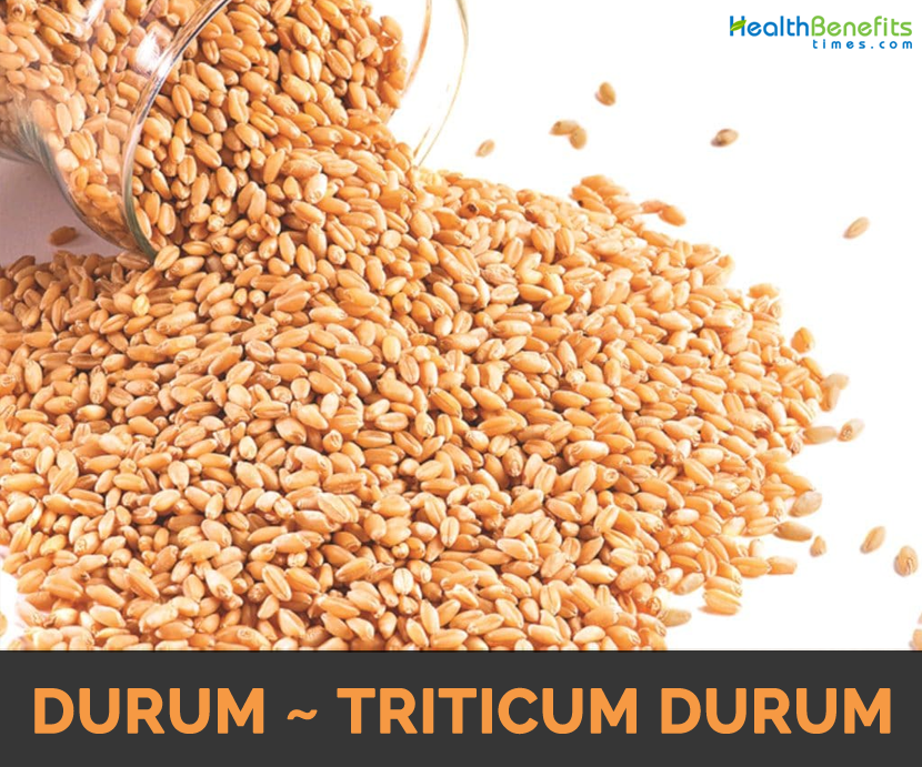 Know about Durum