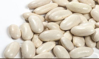 Benefits of White Kidney Beans