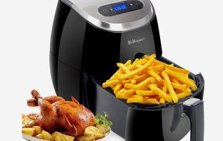 The 5 Healthy Air Fryer Recipes You Should Know