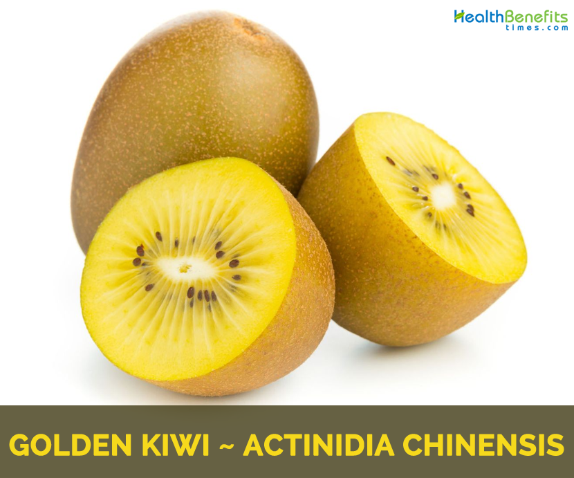 All about Golden Kiwi