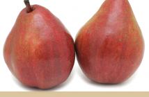 All about Red Anjou Pear