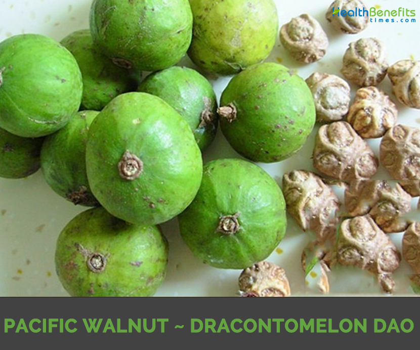Know about Pacific Walnut
