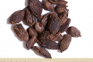 Black Cardamom Benefits