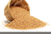 Kodo Millet facts and benefits