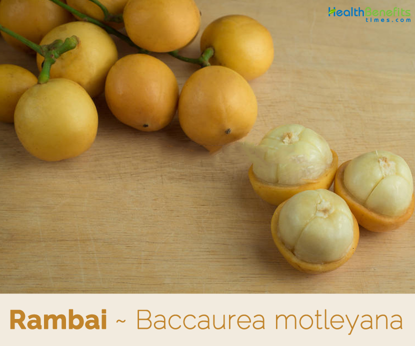 Rambai the Wonderful fruit