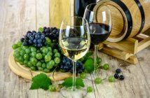 Health related benefits of wine