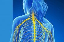 neurotropic nerve pain