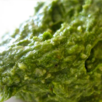 Wild Leek and Cashew Pesto