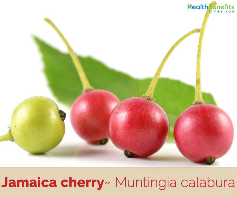 Health benefits of Jamaica Cherry