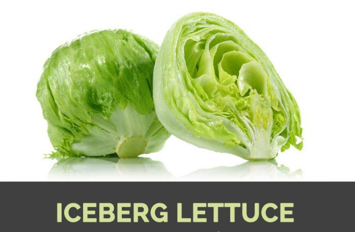 Iceberg Lettuce Facts Health Benefits Nutritional Value