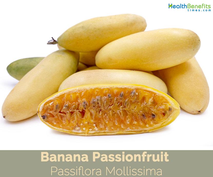 Banana passionfruit PASSIFLORA MOLLISSIMA passion fruit flower seed 100 SEEDS