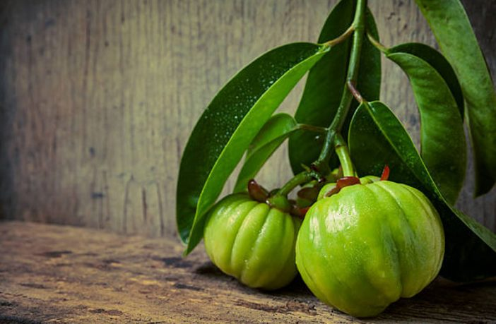Health Benefits Of Garcinia Cambogia For Weight Loss