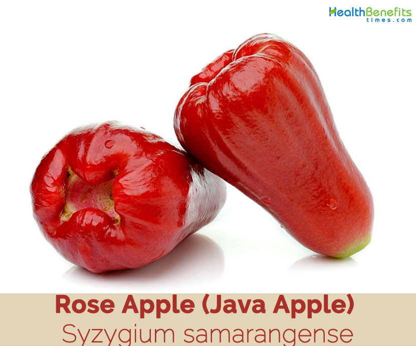 Java Apple Facts And Health Benefits
